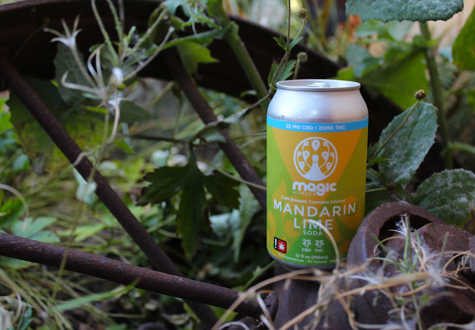 Magic Number 1:1 Mandarin Lime Soda