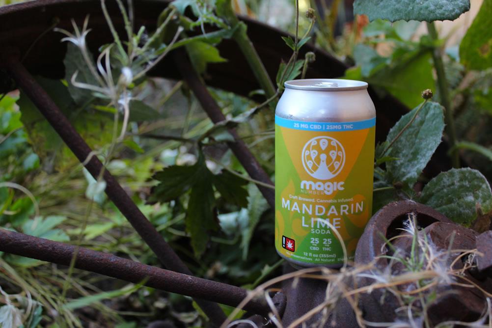 Magic Number 1:1 Mandarin Lime Soda